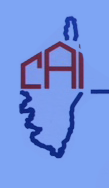 logo corse avenir immobilier V3 copie